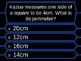 Millionaire Quiz! (Perimeter, Area and Volume Edition)