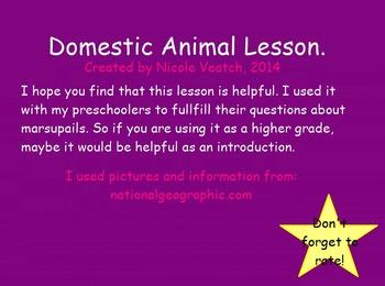 Mimio Domestic Animals Lesson and Book