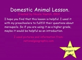 Mimio Domestic Animals Lesson and Book