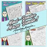 Mind Bender Mazes Bundle