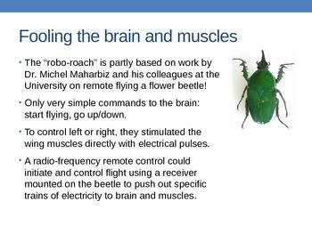 Mind Control - Advances in Neuroscience