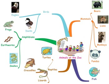 Mind Map Example: Animals at the Zoo