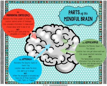 Mindful Brain Poster