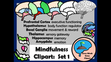 Mindfulness Clipart:  Set 1  Get to Know Your Brain