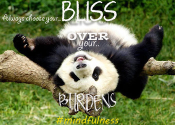 Mindfulness Poster Bliss Over Burdens