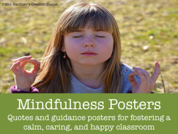 Mindfulness Posters - Quotes and Guidance for Mindful Students
