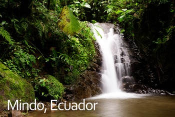 Mindo, Ecuador Poster: Digital Download