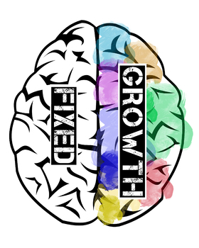 Mindset Brain