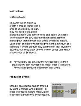 Minecraft: Building a Wheat-based Economy Activity