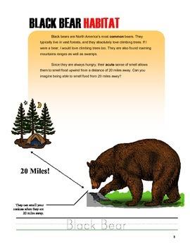 Minecraft Curriculum ~ Mammals Zoology Design Challenge Workbook
