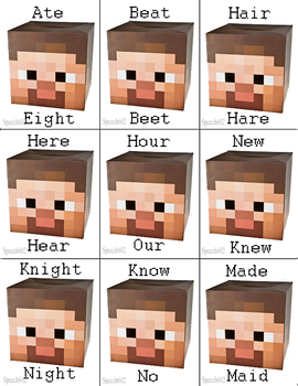 Minecraft - Homophone flash cards
