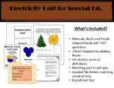 Minerals, Rocks, and Fossils Unit for Special Education