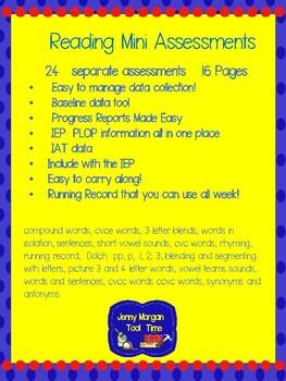 Mini Assessment for Reading