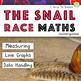Mini Beast Maths Bundle