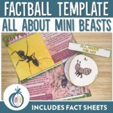 Mini Beasts Factballs and Fact Sheets