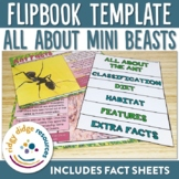 Mini Beasts Flipbooks and Fact Sheets