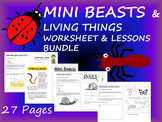 Mini Beasts Unit Lessons and Resources
