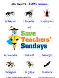 Mini-Beasts in French Worksheets, Games, Activities and Flash Cards
