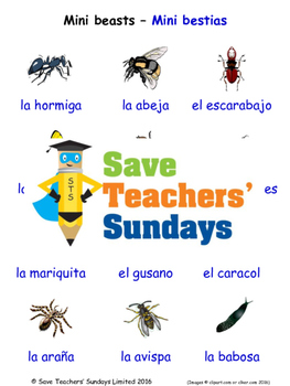 Mini-Beasts in Spanish Worksheets, Games, Activities and Flash Cards