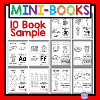 Mini-Book Sample