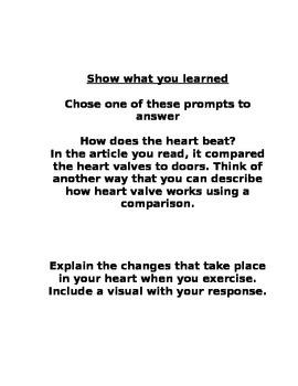 Enrichment Project-Heart