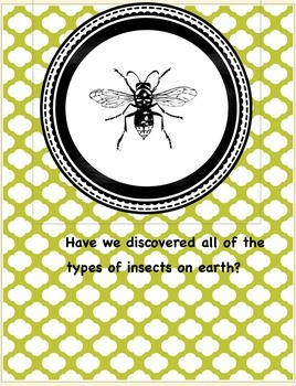 Enrichment Project-Insects