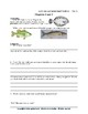 Mini-Guide for Juniors: Sarah, Plain and Tall/Skylark Workbook