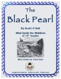Mini-Guide for Seniors: The Black Pearl Interactive
