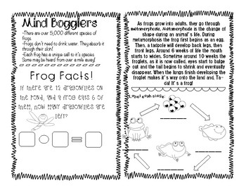 Mini-Mags: Life Cycle of a Frog