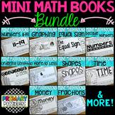 First Grade Math - Mini Math Books Bundle