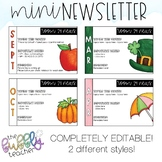 Editable Monthly Mini Newsletter - Half Page - Perfect for