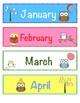 Mini Owl Theme Birthday Bulletin Board Set