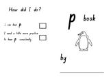 Phonics SATPIN Mini Book Pp