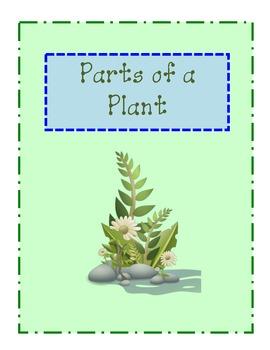Mini Plant Unit