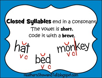 Mini Posters, The Six Syllable Types! Phonics Based Instruction. Intervention