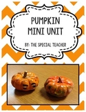 Pumpkin Mini Unit