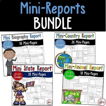 Mini Reports Bundle