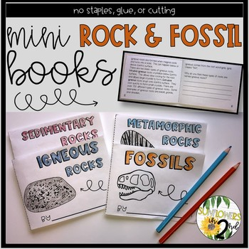 Mini Rock & Fossil Books