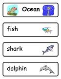 Mini Word Book-Ocean Words