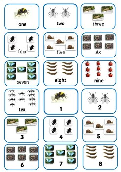 Mini-beasts Coourful Semantics Resource (linked to Hungry Caterpillar Story)