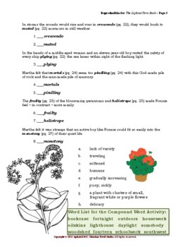 Mini-guide for Juniors: The Light at Tern Rock Reproducibles