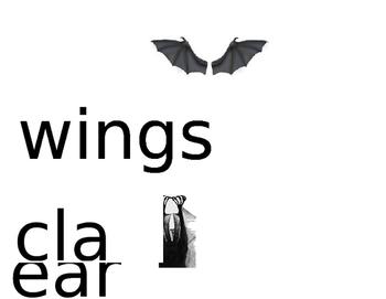 Mini word wall- Bats