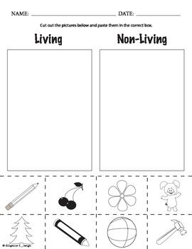MiniScience: Living vs. Non-Living