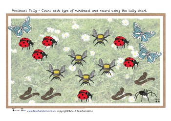 Minibeast Count and Tally