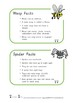 Minibeast Fact Sheets