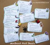 Minibeast Fact Sheets