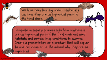 Minibeast Inquiry for Seniors (8 to 12 year olds)