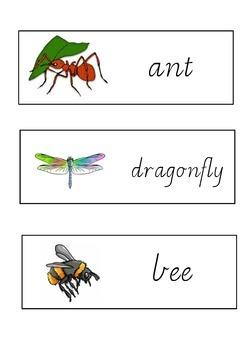 Minibeast Sight Words