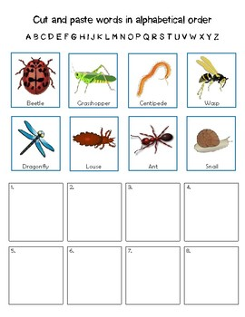Minibeast Themed Alphabetical Order Worksheets