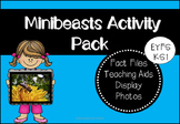 Minibeasts Activity Pack